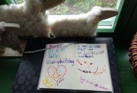 spannender-kindergeburtstag-leipzig